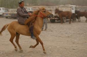 Kashgar 12