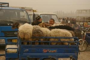 Kashgar 7